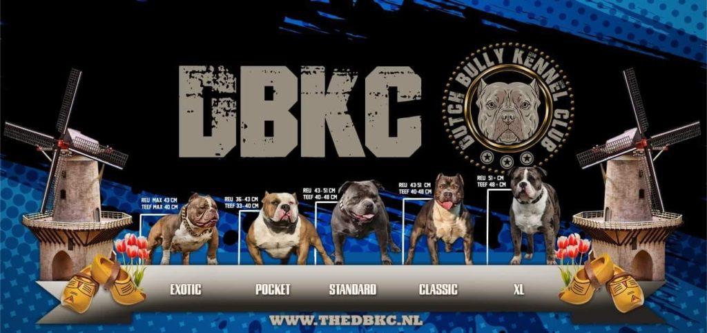 Zondag 2 augustus organiseert de DBKC een hondenshow in de Margriethallen in Schiedam. Een mooie gelegenheid om hondenbaasjes kennis te laten maken met CBD